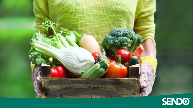 Полезни храни при високо кръвно налягане